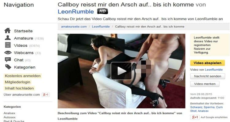 Callboy beim Analsex